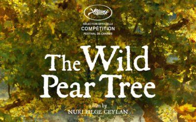 The Wild Pear Tree By Nuri Bilge Ceylan